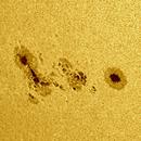 Sunspot AR2781 (06 Nov 2020, 09:42UT),                                Bernhard Suntinger