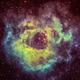 NGC 2237 Rosette,                                Milen Gogov