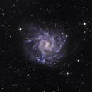 NGC 7424,                                Mark