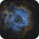 NGC 2237 Rosetta,                                Andre van der Hoeven