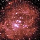 Nebulosa Roseta y cúmulo abierto NGC 2244,                                Miquel