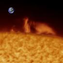 Solar Prominences - 3/22/2020,                                Damien Cannane