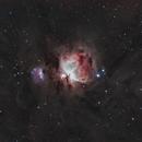 M42 The Orion Nebula,                                Logan Carpenter