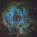 Rosette Nebula SHO,                                Kevin Osborn