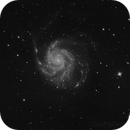 M101 in black and white,                                bobzeq25