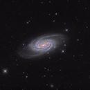 NGC 2903,                                noodle