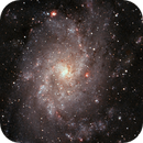 Galaxy Triangulum M33,                                Stephen Heliczer FRAS