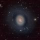 Messier 94 (NGC 4736), Croc's eye galaxy,                                Ricardo Pereira