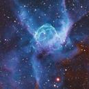 NGC2359,                                Tolga