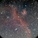 IC 2177 - The Seagull Nebula,                                Alex Vukasin