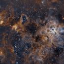 Tarantula Nebula ,                                Craig Rodgers