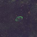 C27 Crescent Nebula-Hubble palette (SHO)-Meade 80 ED triplet-Orion flattener-ASI 1600 MM-Pro,                                Adel Kildeev