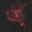 Heart Nebula,                                Mike Lloyd