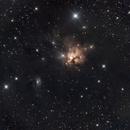NGC 1579,                                Scotty Bishop