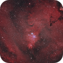 fox fur nebula,                                binsky161