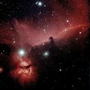 Horsehead and Flame Nebulae,                                Giancarlo Montico