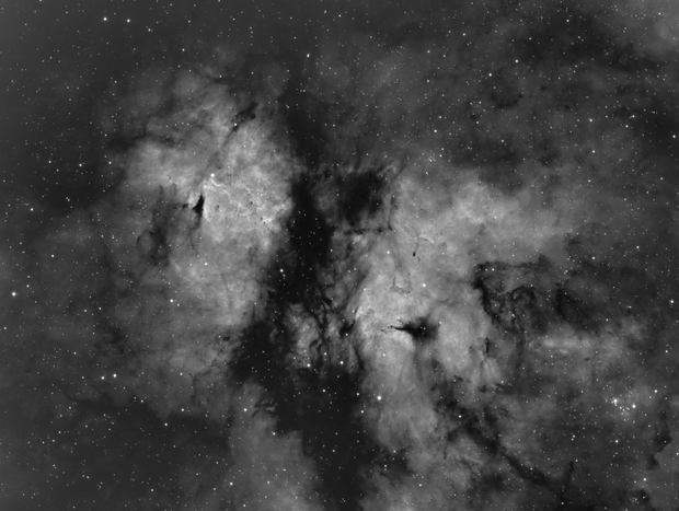 Gamma Cygni Nebula IC1318 and NGC 6910 in H-Alpha,                                Mario Gromke