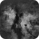 Gamma Cygni Nebula IC1318 and NGC 6910 in H-Alpha,                                Mario Gromke