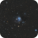 NGC 7129 - Reflection Nebula in Constellation Cepheus.,                                Falk Schiel