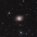 NGC 2339 - a small galaxy in Gemini,                                wimvb