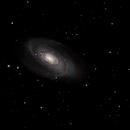 M81-M82,                                floreone