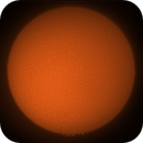 Sun in H-Alpha,                                nonsens2