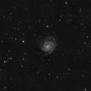M101 Pinwheel Galaxy (data resurrection),                                Colm O'Dwyer