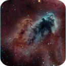 LDN1622 The Bogeyman Nebula,                                Randal Healey