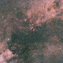 Cygnus - North America Nebula II,                                Georg G Albrecht