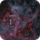 NGC 2044 and SN1987a,                                GoldfieldAstro