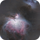 M42 The Great Orion Nebula,                                Caleb Melton