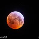 L'Eclipse de Lune du 21/01/2019,                                Adrien MEURISSE