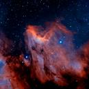 Pelican Nebula,                                starbuck