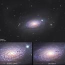 M63 and a faint supernova,                                Daniele Gasparri