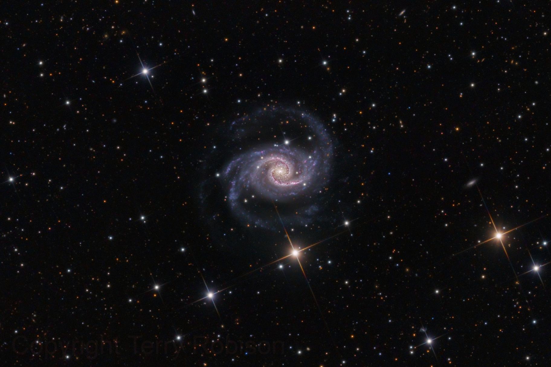 NGC 1566 - The Spanish Dancer,                                Terry Robison