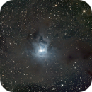 NGC 7023 Iris Nebula,                                interplanetary