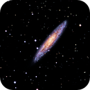 NGC253 Sculptor Galaxy,                                Gilbert Ikezaki