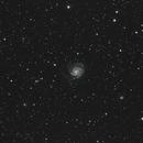 M101 - Pinwheel Galaxy and its neighborhood,                                MGralike