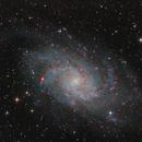 Galaxia del molinillo,                                Andrés Ruiz de Valdivia
