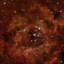 ROSETTE NEBULA NGC2244 NGC2239,                                Joel85