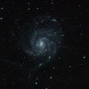 NGC 5457 (M101) Wide Field,                                Harold Freckhaus