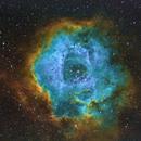 Rosette Nebula -SHO,                                TomBramwell