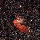 Nébuleuse du sorcier NGC7380,                                Jacques CROIZIERS