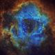 NGC 2237 The Rossette Nebula in Hubble Palette.,                                Chris