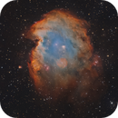 NGC 2174 Monkey Head Nebula SHO,                                Arvid Emtegren