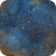 IC 1396 - L-SHO,                                Benoît Jacquemin