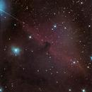 Horsehead nebula,                                Jürgen Ehnes