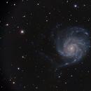 M101,                                ScottyP5947