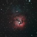 Trifid Nebula,                                Paul Wilcox (UniversalVoyeur)