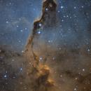 IC1396 Elephant Trunk Nebula Hubble,                                Chris R White